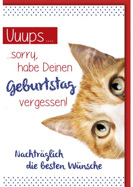 """Geburtstagskarte - nachträglich, Katze """"sorry"""""""