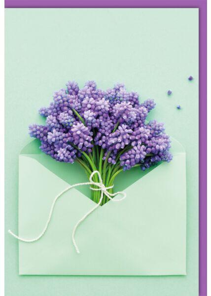 Blankokartekarte - Traubenhyazinthen im Kuvert