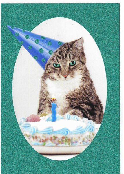 Geburtstagskarte Glimmerlack lustig Katze