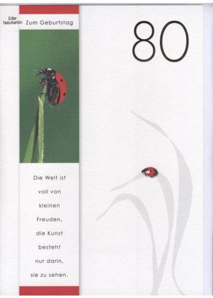 DIN A4 Maxikarte XXL große Geburtstagskarte 80 (Naturpapier + Goldfolie): Zum 80 Geburtstag