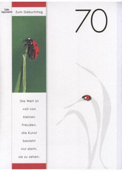 DIN A4 Maxikarte XXL große Geburtstagskarte 70 (Naturpapier + Goldfolie): Zum 70 Geburtstag