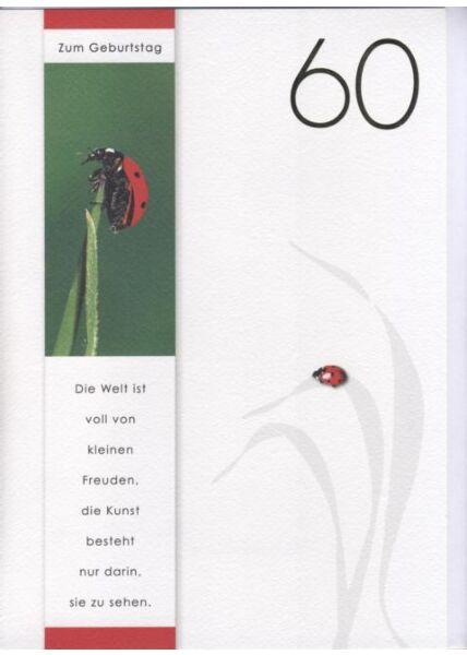 DIN A4 Maxikarte XXL große Geburtstagskarte 60 (Naturpapier + Goldfolie): Zum 60 Geburtstag