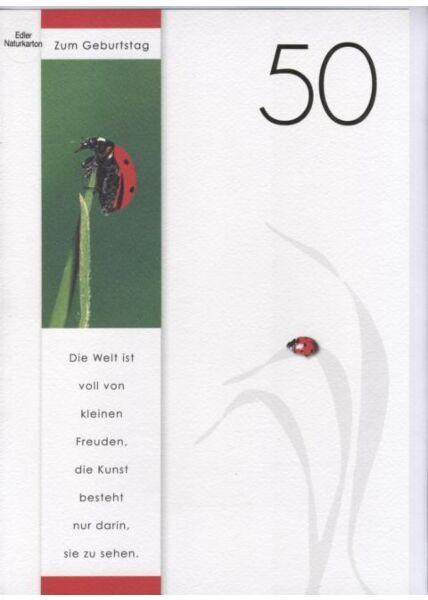 DIN A4 Maxikarte XXL große Geburtstagskarte 50 (Naturpapier + Goldfolie): Zum 50 Geburtstag