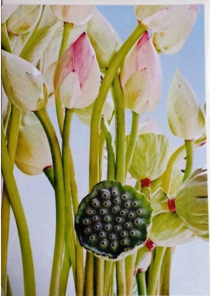A4 Maxikarte XXL Kunst: Blumen