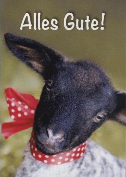 """Postkarte Abschiedskarte Ziege: """"Alles Gute!"""""""