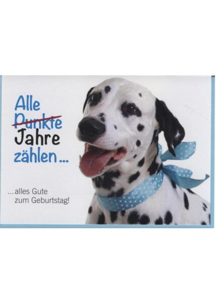 Geburtstagskarte Tiere, Hund: Alle Punkte zählen