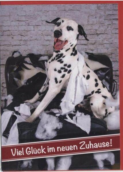 Glückwunschkarte zum Einzug, Hund: Viel Glück im neuen Zuhause