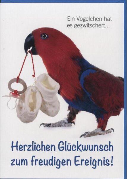 Glückwunschkarte Geburt Baby, Papagei, Tiermotiv: Herzlichen Glückwunsch zum freudigen Ereignis