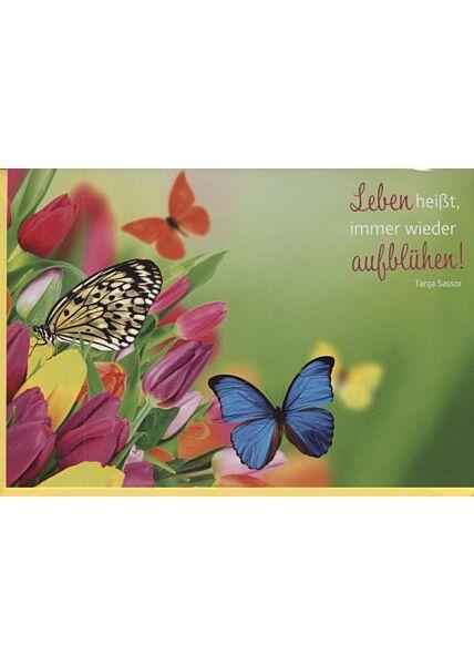 """Grußkarte mit Sinnspruch: """"Leben"""""""
