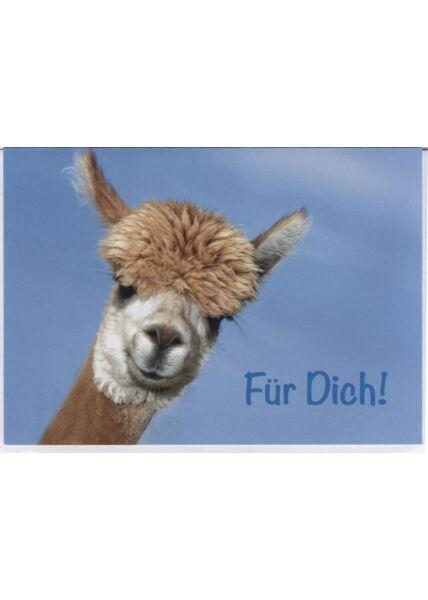 Grusskarte lustig, Lama: Für Dich!