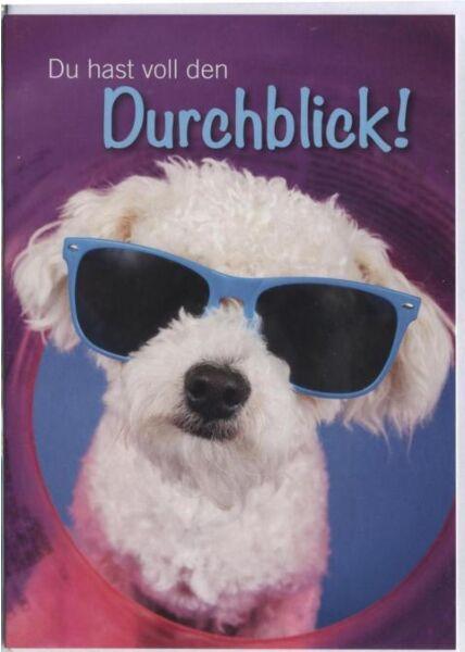Grusskarte lustig, Hund: Du hast voll den Durchblick