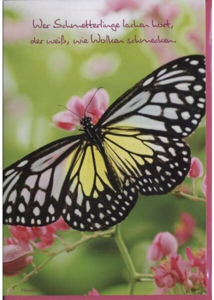 """Grusskarte: """"Wer Schmetterlinge lachen hört"""""""
