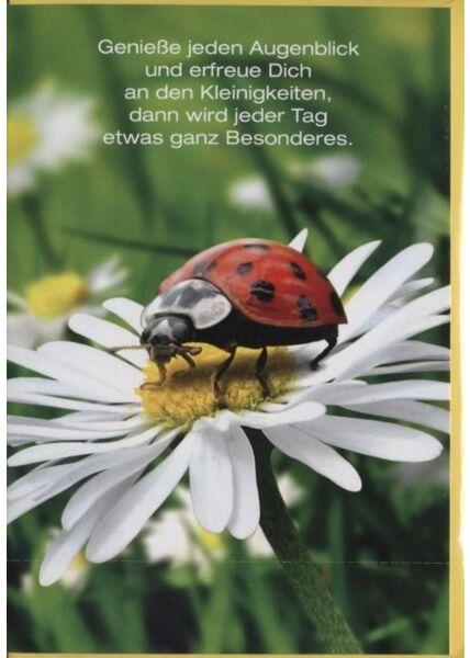 """Grusskarte: """"Genieße jeden Tag"""""""