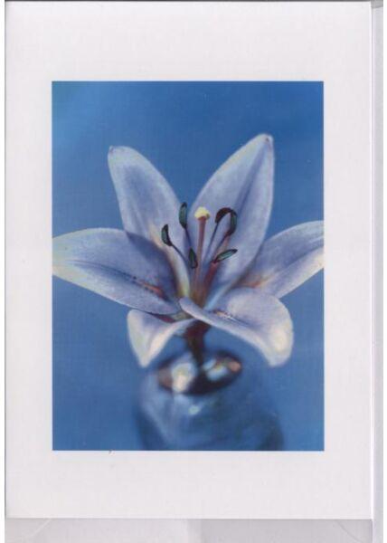 Grußkarte: Blumenblüte, blau