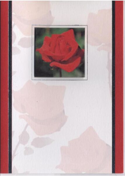 Grußkarte blanko: Rose
