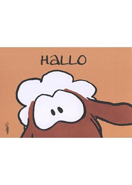 Jan Vis Cartoon Postkarte: Hallo - Schafgesicht