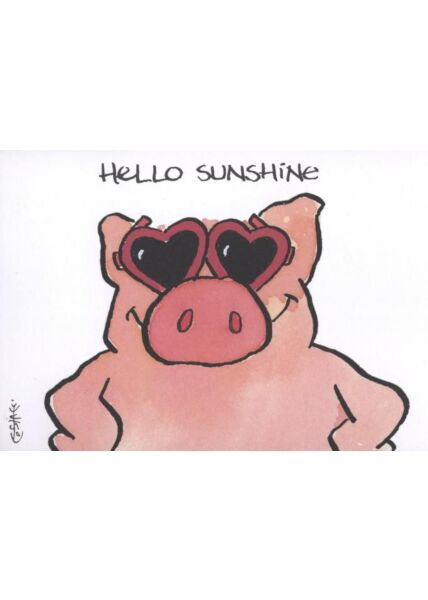 Jan Vis Cartoon Postkarte Liebe: Hello Sunshine