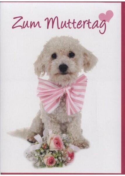 Muttertagskarte Hund, Tiermotiv: Zum Muttertag