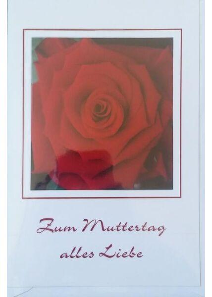 """Muttertagskarte mit Rose: """"Zum Muttertag alles Liebe"""""""