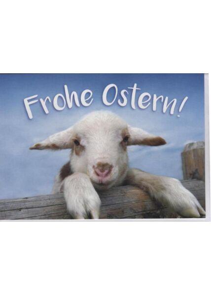 """Osterkarte, Tiermotiv: """"Frohe Ostern!"""" kleines Lamm"""