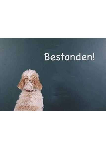 """Postkarte Prüfung Klausur: """"Bestanden!"""""""