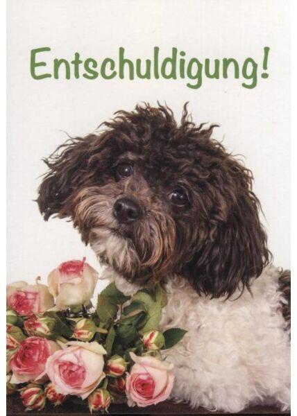 """Postkarte Entschuldigung, Entschuldigungskarte Hund: """"Entschuldigung!"""""""