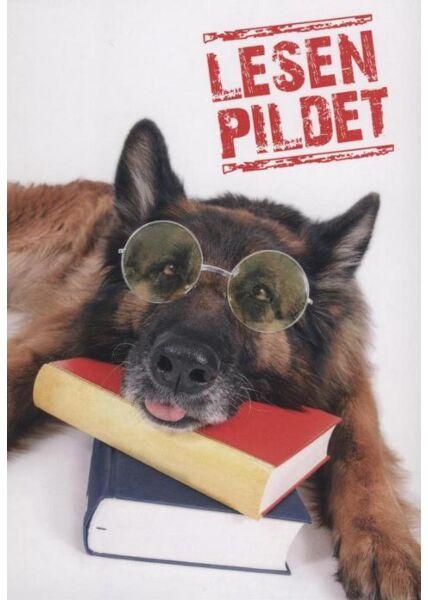 """Postkarte Hund lustig: """"Lesen Pildet"""""""