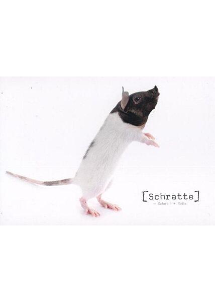 """Tierische Mutanten Postkarte witzig: """"Schratte"""""""