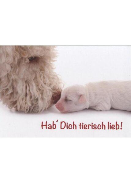 Lustige Tierpostkarte: Hab Dich tierisch lieb