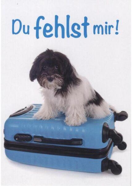 Tierpostkarte Liebesspruch: Du fehlst mir!