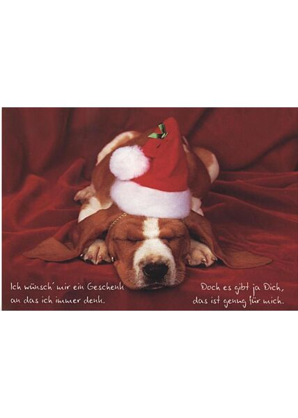 Weihnachtspostkarte Hund