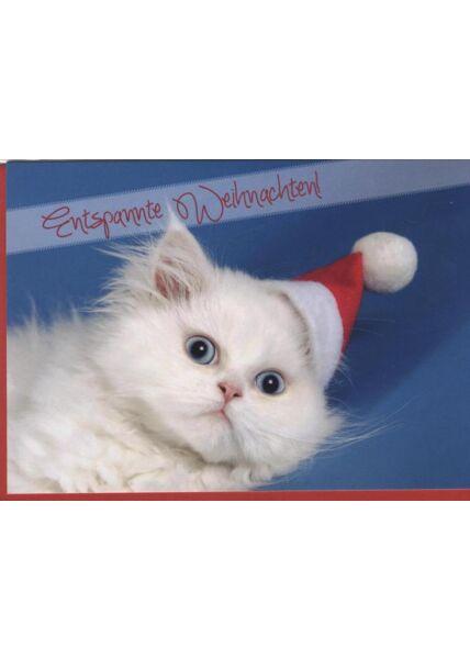 Weihnachtskarte Katze -Tiermotiv: Entspannte Weihnachten!