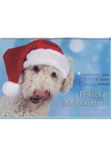 Weihnachtskarte Hunde -Tiermotiv: Die schönste Art des Wartens ist die Vorfreude