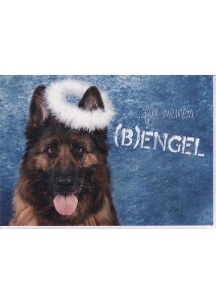 Weihnachtskarte Hunde -Tiermotiv: ...für meinen (B) engel