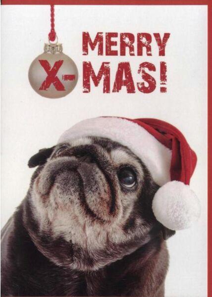 Weihnachtskarte Hund Mops -Tiermotiv: Merry X-Mas