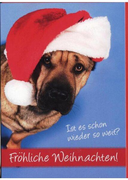 Weihnachtskarte Hund Schäferhund -Tiermotiv: Ist es schon wieder so weit?